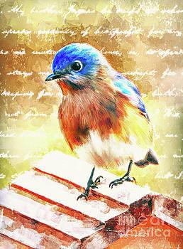 The Lovely Bluebird by Tina LeCour