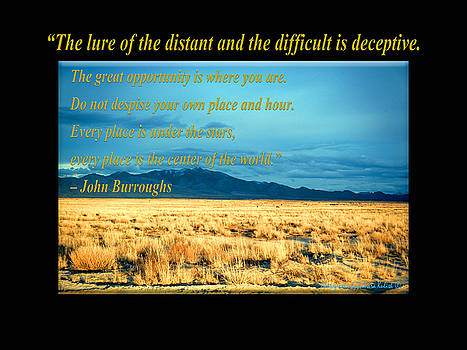 Tamara Kulish - The Lure of the Distant and the Difficult is Deceptive