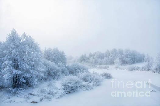 The magic of winter 2 by Veikko Suikkanen