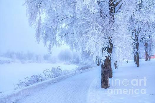 The magic of winter 4 by Veikko Suikkanen