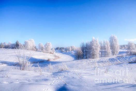 The magic of winter by Veikko Suikkanen