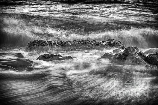 The Majestic Ocean by Kenroy Rhoden