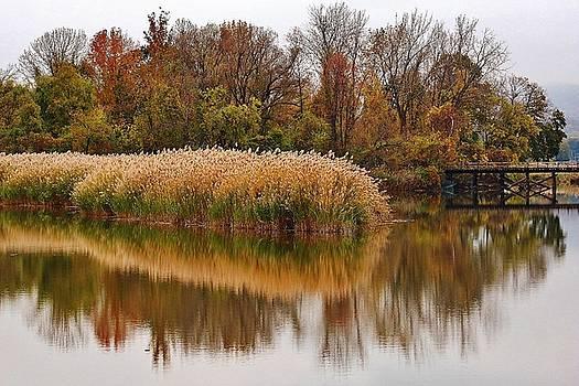 The Marsh Bridge by Thomas McGuire