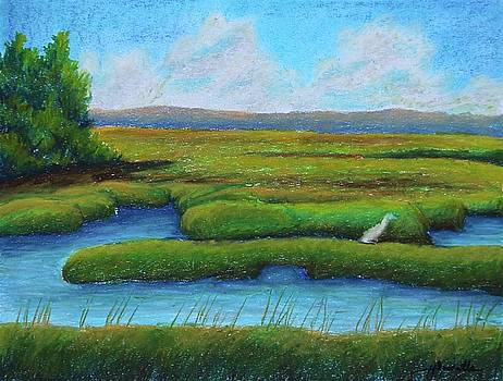 The Marshes by Heather Sweatte