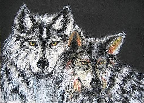 The Mates Mexican Wolves by Elizabeth H Tudor