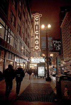 The Mean Streets of Chicago by Linda Unger