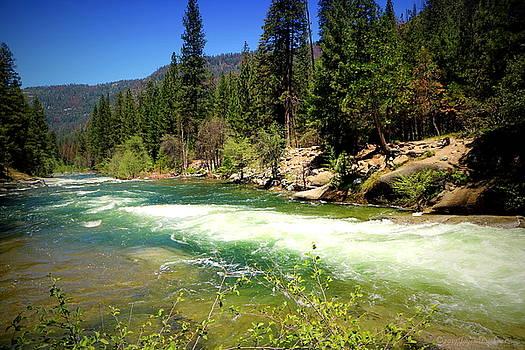 Joyce Dickens - The Merced River In Yosemite