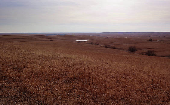 The Middle of the Flint Hills by Thomas Bomstad