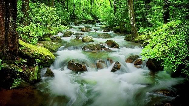 The Middle Saluda River, South Carolina by Flying Z Photography by Zayne Diamond