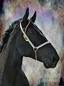 The Mighty Black Percheron by Al Bourassa