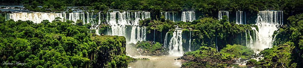 The Mighty Iguazu  by Andrew Matwijec