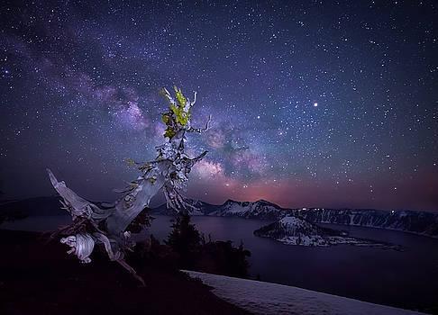 The Milky Way over Crater Lake by Matt Shiffler