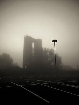 The Mist by Pedro Fernandez