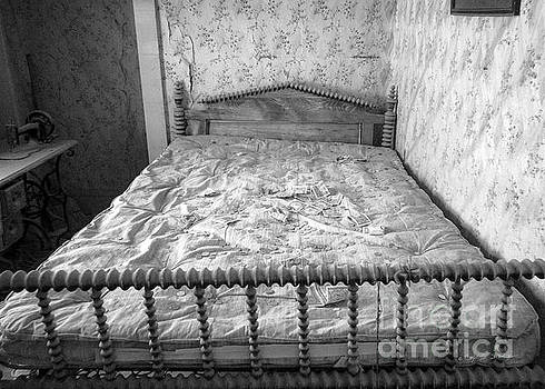 The Money Bed by Craig J Satterlee