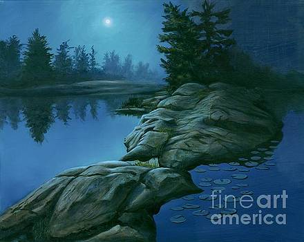 The Moonlight Hour by Michael Swanson