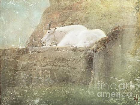 The Mountain Goat by Victoria Harrington