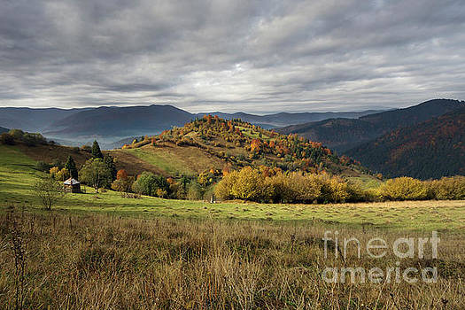 The Mountain's Meadows In Autumn Morning by Michael Lesiv
