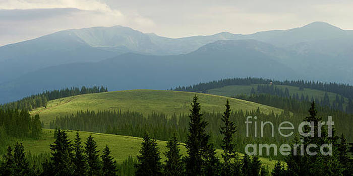 The Mountain's Meadows In Summer Morning by Michael Lesiv