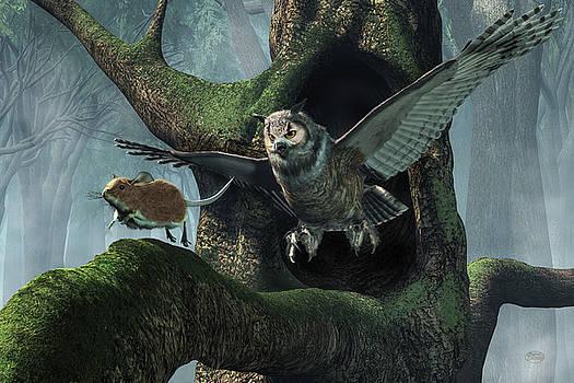 Daniel Eskridge - The Mouse and the The Owl