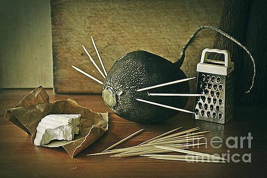 The mouse by Binka Kirova