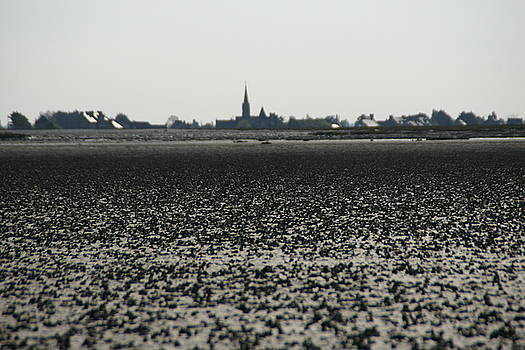 The Mud Flats at Viviers Sur Mer by Brandy Herren