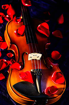 The musical rose petals by Gerald Kloss