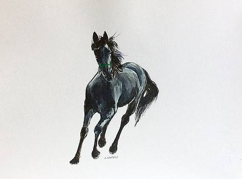 The Mustang by Ellen Canfield