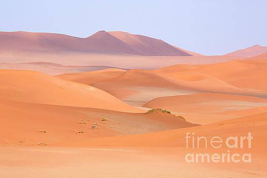 The Namib desert in Namibia, Africa by Julia Hiebaum