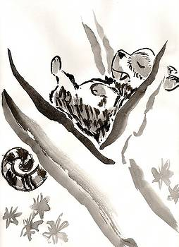 The Napping Tree by C Casey Gardiner