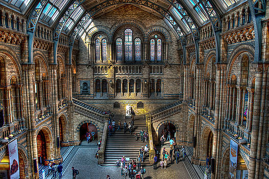 The Natural History Museum London UK by Donald Davis