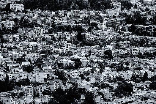 The Neighborhood by Emily Bristor