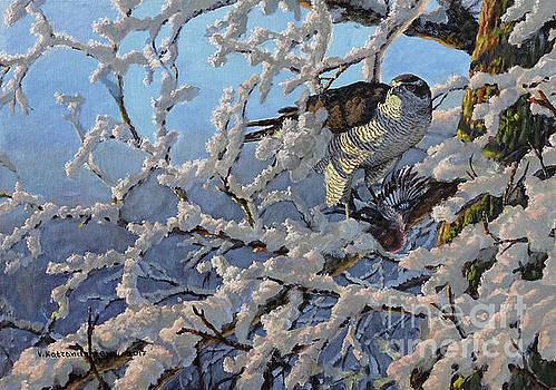 The New Day by Valentin Katrandzhiev