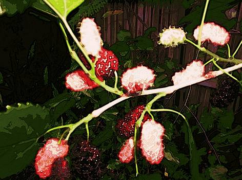 The New Mulberries by Winsome Gunning
