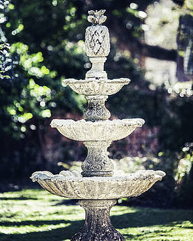 The New Orleans Fountain by Lisa Russo