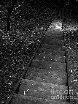 Steps by Rick Wheeler