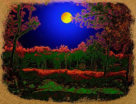 Bliss Of Art - The night scene