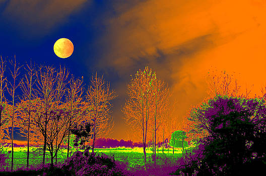 Bliss Of Art - The night touch of nature