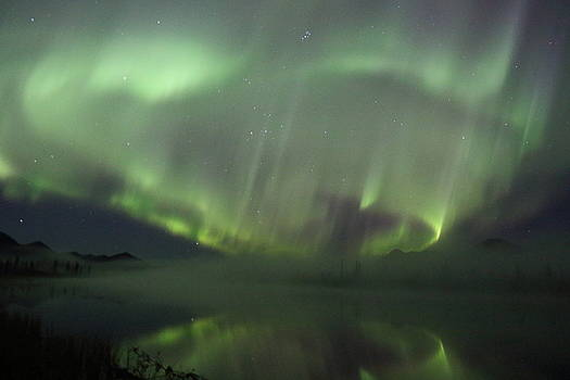 The Northern Lights Over The Denali Highway's Twin Lakes by Steve Wolfe