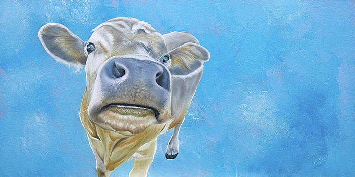 The Nosey Cow by Ashley  Brayson