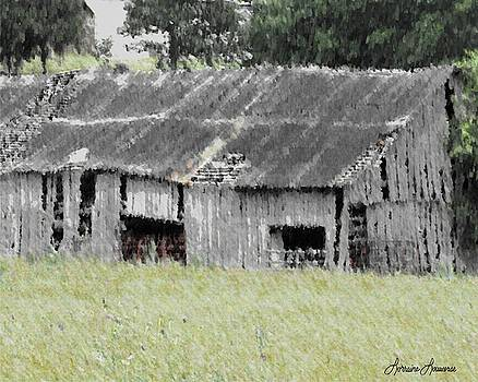 The Old Barn by Lorraine Louwerse