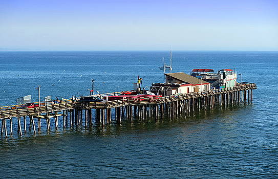 The Old Capitola Pier by Joyce Dickens