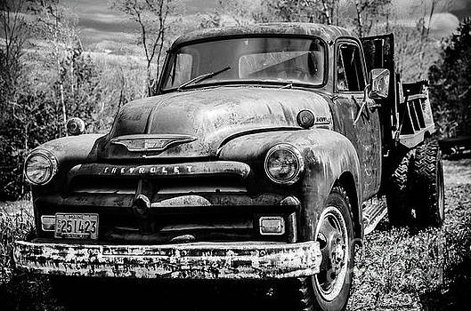 The Old Chevyolet Truck by Alana Ranney