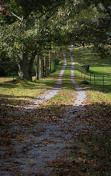 The old country road by Dennis Reagan
