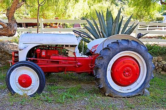 The Old Ford Tractor 1 by Tommi Trudeau