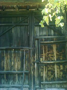The old gate by Zornitsa Tsvetkova