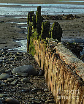 The Old Groyne At Westward Ho by Pete Moyes