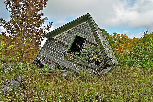 Michael Peychich - The Old Homestead
