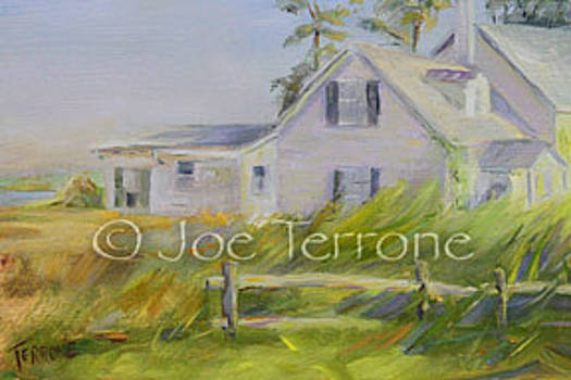 The Old House by Joseph Terrone
