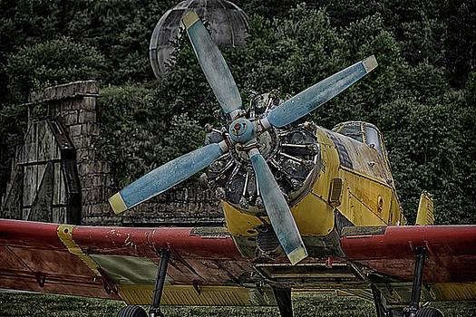 The Old Little Yellow One by Joachim G Pinkawa