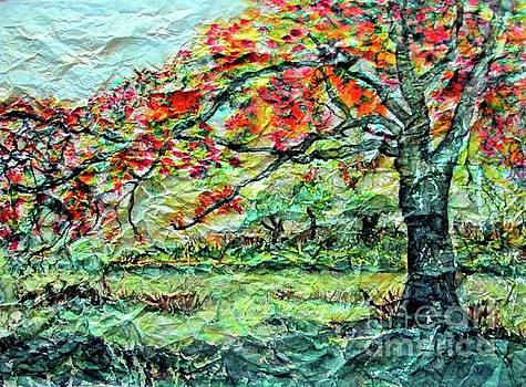 The Old Maple Tree by Norma Boeckler